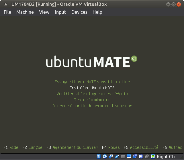 Installing Ubuntu with Full Disk Encryption - Tutorials